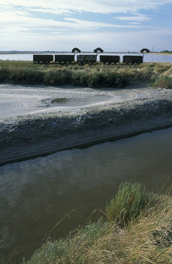 po delta park/saltworks, cervia, italy : Stock Photo