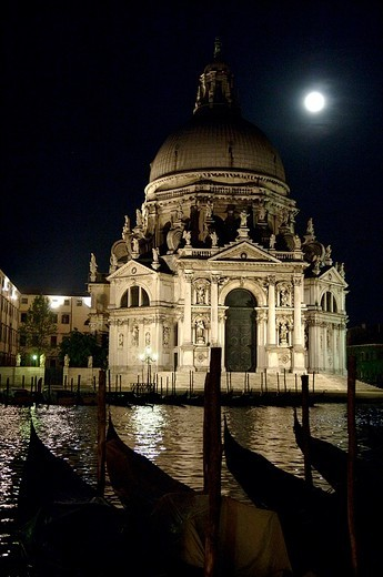 europe, italy, veneto, venice, santa maria della salute : Stock Photo