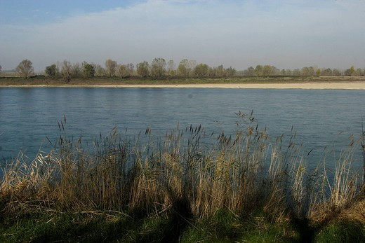 Stock Photo: 3153-623451 po river, polesine parmense, emilia romagna, italy
