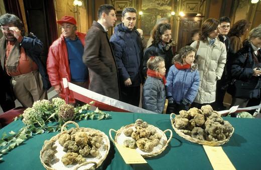 Stock Photo: 3153-626242 regional truffles feast, asti, italy