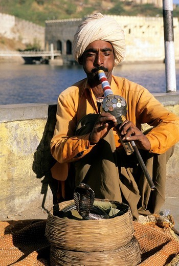 india, rajasthan, jaipur, snake_charmer : Stock Photo