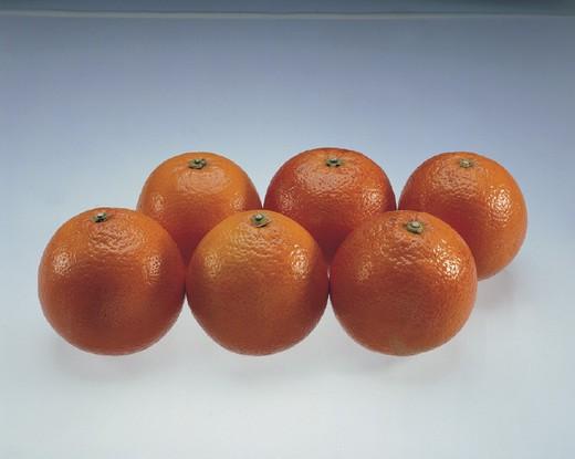 Stock Photo: 3153-639498 oranges