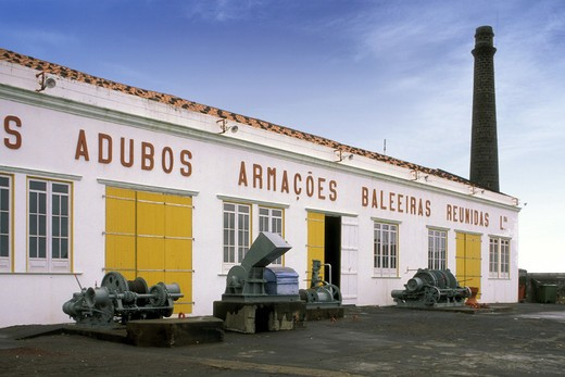 lajes do pico: whale museum, pico, portugal : Stock Photo