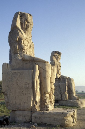 colossus of memnone:amenofi 3rd, luxor, egypt : Stock Photo