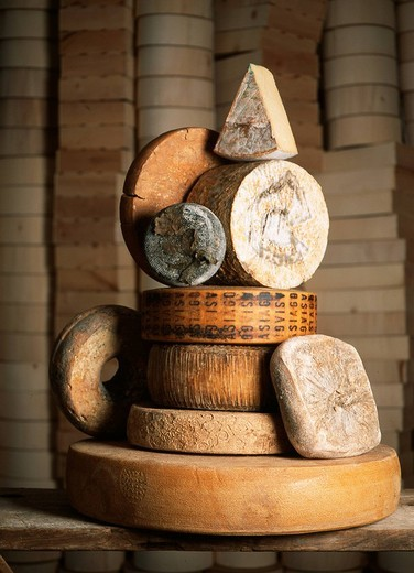 italian cheese : Stock Photo