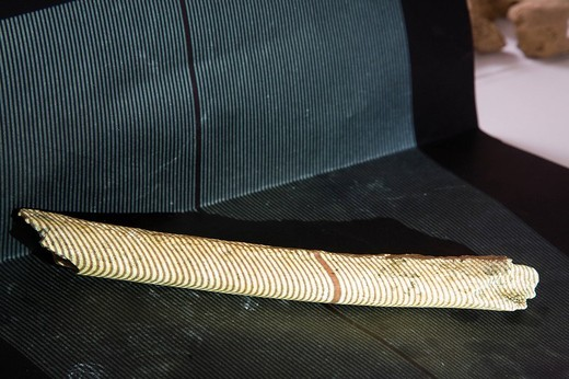 Stock Photo: 3153-649287 ricerca delle ossa del pittore italiano caravaggio, scanner 3D, dipartimento di storie e metodi per la conservazione dei beni culturali, università di ravenna, emilia romagna, italia