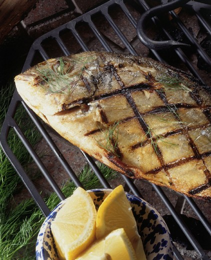 Stock Photo: 3153-649823 grilled gilthead bream