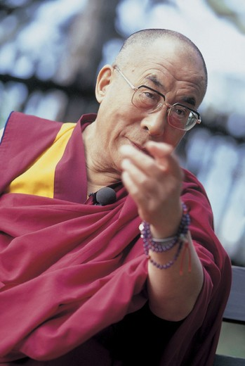 Stock Photo: 3153-651377 dalai lama