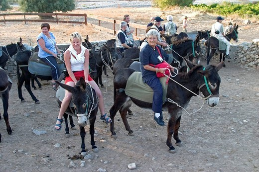 Stock Photo: 3153-651997 europe, cyprus, kelokedara village, group of tourist leaving for a trip by donkey