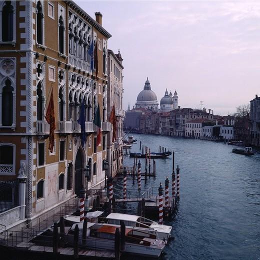 europe, italy, veneto, venice, canal grande, santa maria della salute : Stock Photo