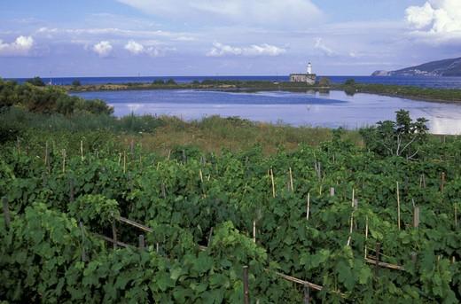Stock Photo: 3153-655523 lingua lighthouse, aeolian salina, italy