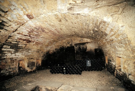 cellar, savigny, burgundy, france : Stock Photo