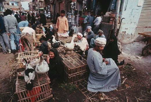 africa, egypt, luxor, market : Stock Photo