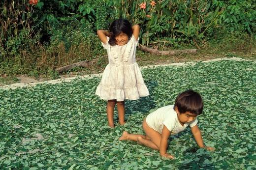 bolivia, children : Stock Photo