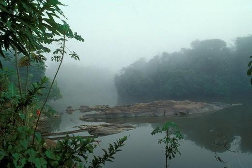 guyana, america, surrounding of georgetown : Stock Photo