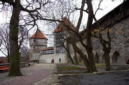 estonia, tallinn, castle of toompea : Stock Photo