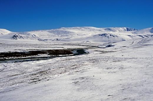 altai mountains, mongolia : Stock Photo
