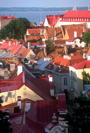 Stock Photo: 3153-683376 europe, estonia, tallinn