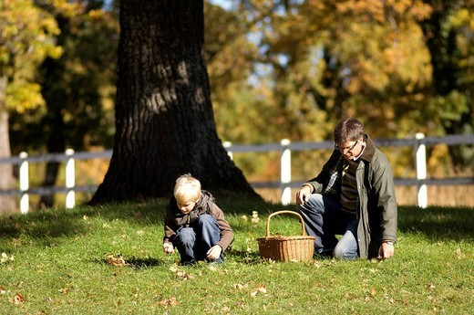 Stock Photo: 3153-697463 father and son searching mushroom