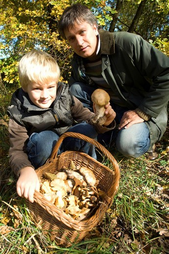 Stock Photo: 3153-697464 father and son searching mushroom