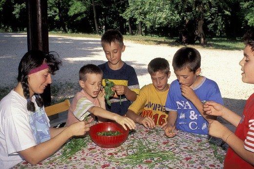 lesson at wwf camp, s.floriano park, italy : Stock Photo