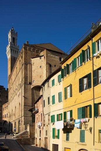 europe, italy, siena, piazza del mercato : Stock Photo