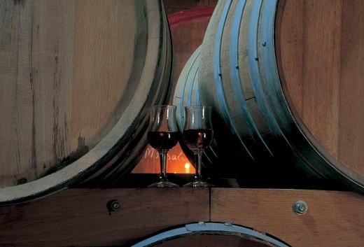 cellar, marsala : Stock Photo