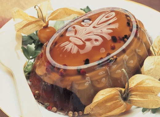 Stock Photo: 3153-721033 foie gras aspic
