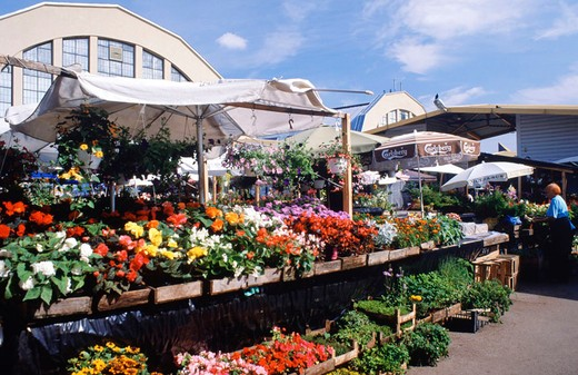 Stock Photo: 3153-722405 europe, latvia, riga, market, flowers