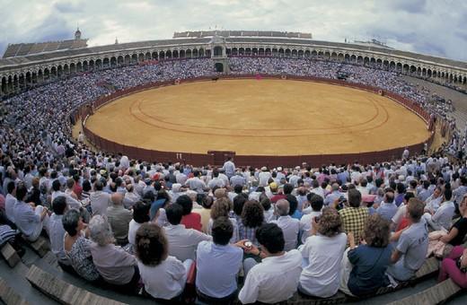 Stock Photo: 3153-732623 spain, seville, bullfight