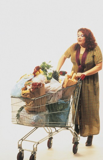 Stock Photo: 3153-735042 woman, doing the shopping