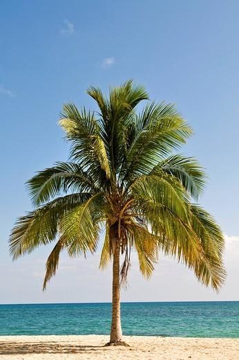 Stock Photo: 3153-742967 playa ancon, cuba