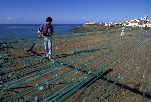 Stock Photo: 3153-745276 ponta delgada: nets and fishermen, sao miguel, portugal