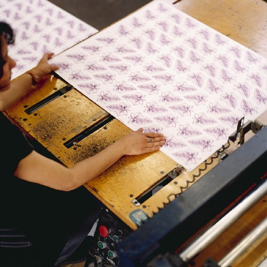 serigraphy print industry : Stock Photo