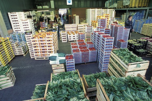 fruits and vegetables market, bergamo, italy : Stock Photo