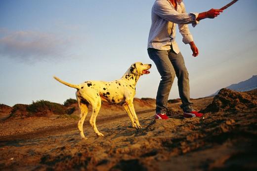 Stock Photo: 3153-761086 one man, dog