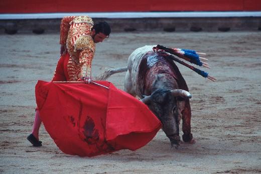 spain, navarra, pamplona, feria of san fermin, plaza de toros, bullfight : Stock Photo
