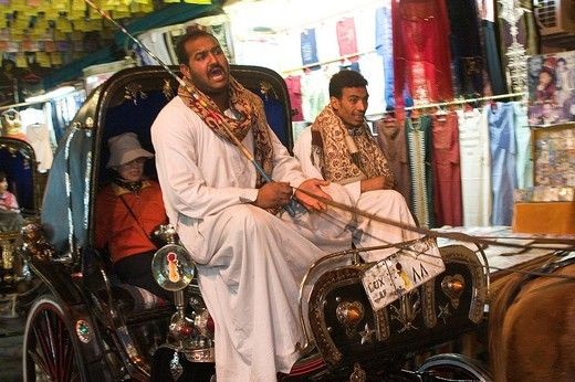 africa, egypt, luxor, the market, caleche driver : Stock Photo