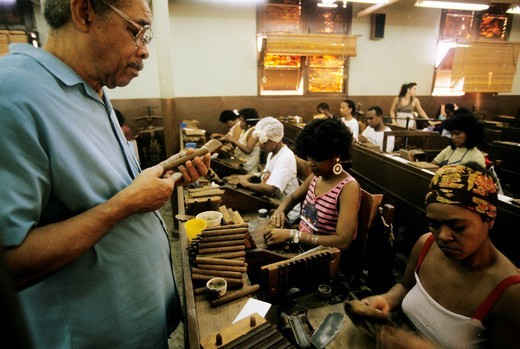 Stock Photo: 3153-779285 cuba, havana, partagas, the most famous cigars factory