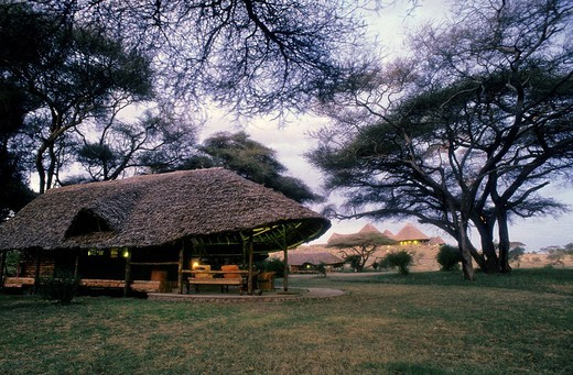 Stock Photo: 3153-783270 tortilis camp, amboseli national park, kenya