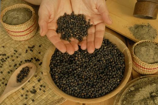black pepper : Stock Photo