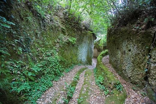 europe, italy, tuscany, sorano, etruscan area, via cava : Stock Photo