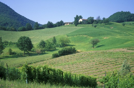 Stock Photo: 3153-788230 typical landscape, castelnovo ne´ monti, italy