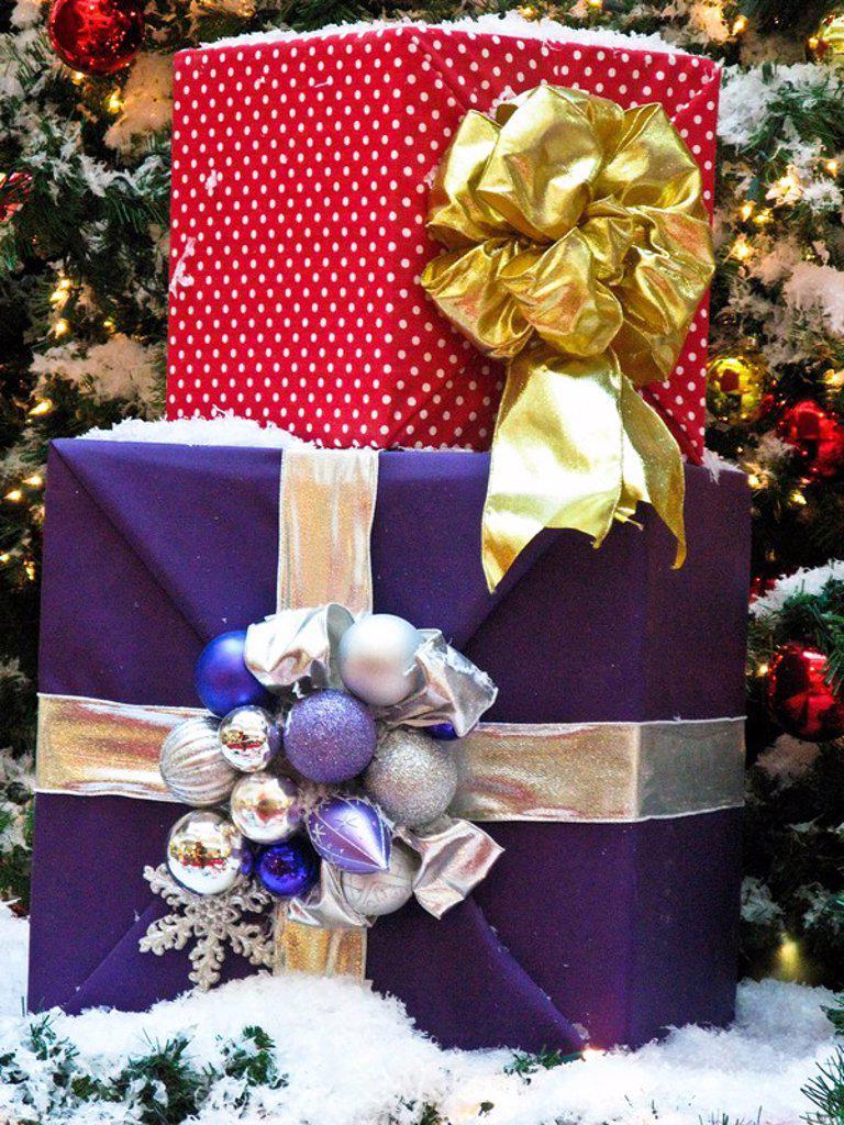 Stock Photo: 3153-789271 presents