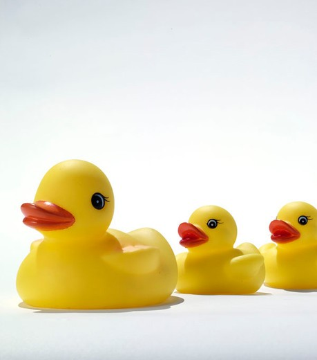 Stock Photo: 3153-794746 rubber ducks
