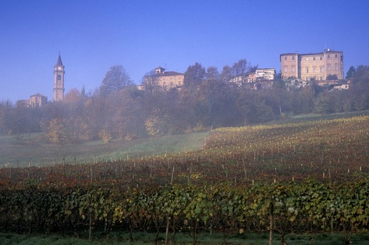 Stock Photo: 3153-796151 village and vineyards, govone, italy