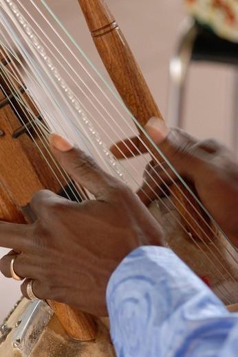 Stock Photo: 3153-798998 africa, mali, bamako, kora musician