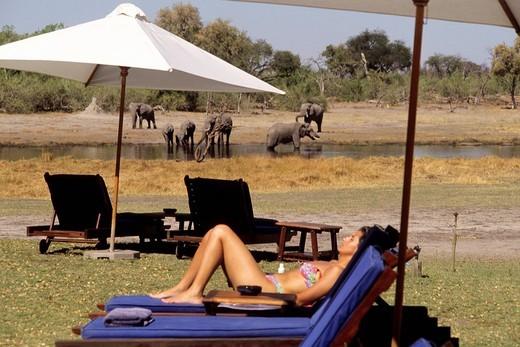 khway river lodge, moremi national park, botswana, africa : Stock Photo