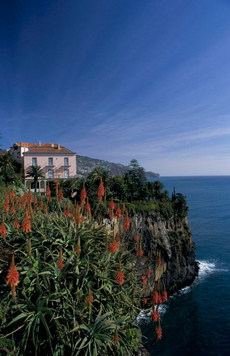 portugal, madeira, funchal : Stock Photo