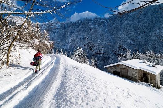 snowshoe trek : Stock Photo